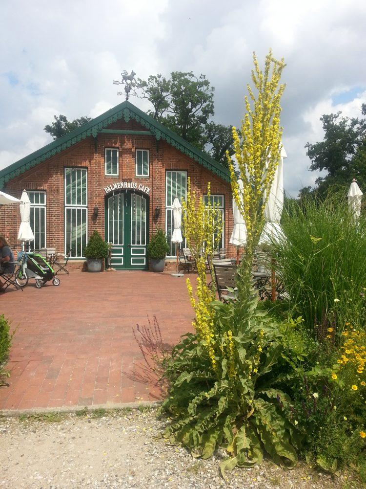 Palmenhauscafé in Sierhagen