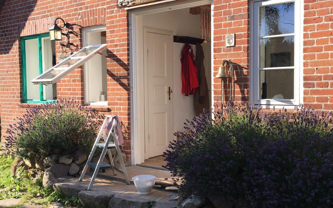 Von Kirschenpflücken und Fenster streichen